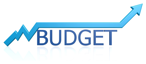 2015 Budget Report